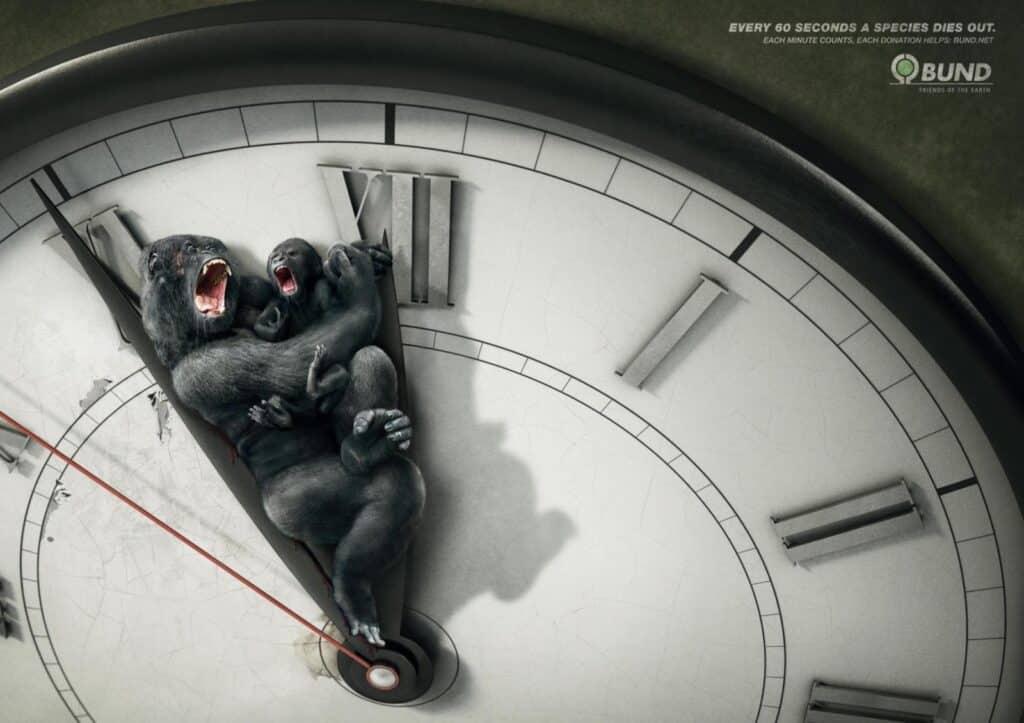 publicidad con animales