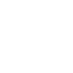web en wordpress Barcelona